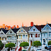 Painted Ladies Print by Bill Gallagher