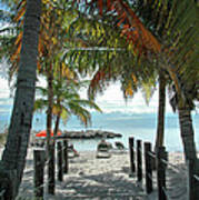 Path To Smathers Beach - Key West Print by Frank Mari