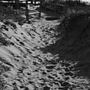 Pathway Through The Dunes Print by Luke Moore