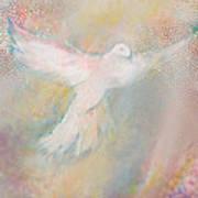 Peace Dove Print by Anne Cameron Cutri
