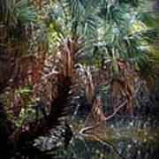 Pepper Creek Palm Print by Sheri McLeroy