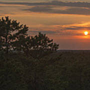 Pine Barrens Sunset Nj Print by Terry DeLuco
