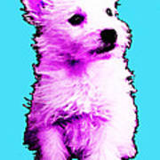 Pink Westie - West Highland Terrier Art By Sharon Cummings Print by Sharon Cummings