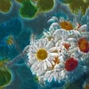 Pot Of Daisies 02 - S11bl01 Print by Variance Collections