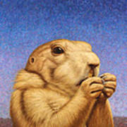 Prairie Dog Print by James W Johnson