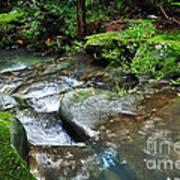 Pretty Green Creek Print by Kaye Menner
