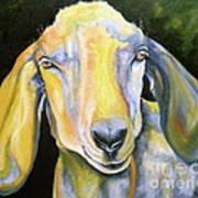 Prize Nubian Goat Print by Susan A Becker