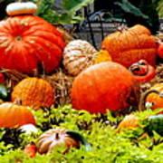 Pumpkin Harvest Print by Karen Wiles