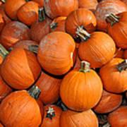 Pumpkins Print by Diane Lent