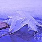 Purple Ice Print by Randi Shenkman