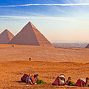 Pyramids And Camels Print by Matthew Bamberg