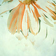 Reconstructed Flower No.1 Print by Bonnie Bruno
