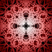 Red Print by Adam Romanowicz