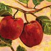 Red Apples On A Branch Print by Jen Norton