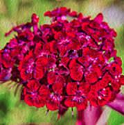 Red Carnations Print by Omaste Witkowski