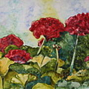 Red Geraniums Print by Patsy Sharpe