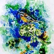 Reina Mora Print by Zaira Dzhaubaeva
