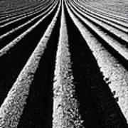Ridge And Furrow Print by Tim Gainey