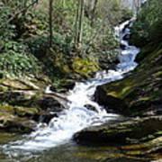 Roaring Fork Falls - Spring 2013 Print by Joel Deutsch