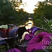 Romantic River View Print by Customikes Fun Photography and Film Aka K Mikael Wallin