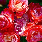 Rose 124 Print by Pamela Cooper