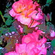 Rose 193 Print by Pamela Cooper