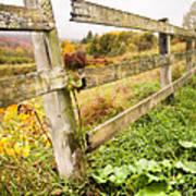 Rustic Landscapes - Broken Fence Print by Gary Heller