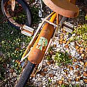 Rusty Bike Bumper Print by Sonja Quintero