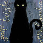 Sad And Ruffled Cat Print by Donatella Muggianu