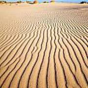 Sand Dunes At Eucla Print by Colin and Linda McKie