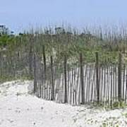 Sand Fence At Cape Lookout Print by Cathy Lindsey