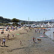 Sausalito Beach Sausalito California 5d22696 Print by Wingsdomain Art and Photography