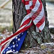 Save The Flag Print by Susan Leggett