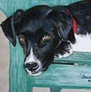 Scout Print by Michele Turney