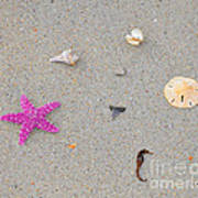 Sea Swag - Pink Print by Al Powell Photography USA