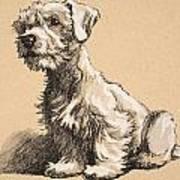 Sealyham Print by Cecil Charles Windsor Aldin