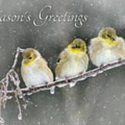 Season's Greetings Print by Lori Deiter