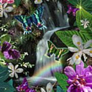 Secret Butterfly Print by Alixandra Mullins
