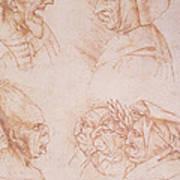 Seven Studies Of Grotesque Faces Print by Leonardo da Vinci