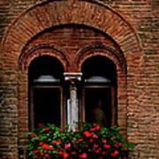 Sienna Window Print by Patrick J Osborne