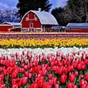 Skagit Valley Print by Benjamin Yeager