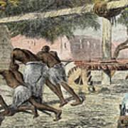 Slaves Irrigating By Water-wheel Print by English School