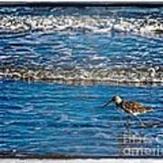 Small Waves Print by Perry Webster