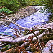 Smoky Mountain Stream Two Print by Frozen in Time Fine Art Photography