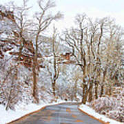 Snow Dusted Colorado Scenic Drive Print by James BO  Insogna