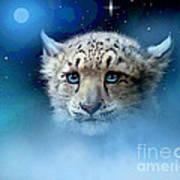 Snow Leopard Cub Print by Robert Foster