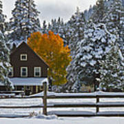 Snowed In At The Ranch Print by Mitch Shindelbower