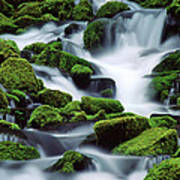 Sol Duc Print by Ginny Barklow