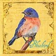 Colorful Songbirds 1 Print by Debbie DeWitt