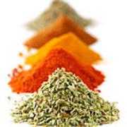 Spices Print by Elena Elisseeva